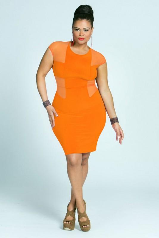 plus size designer dress4 - plus-size-designer-dress4